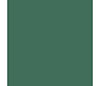 COLORAMA 2,72M SPRUCE GREEN